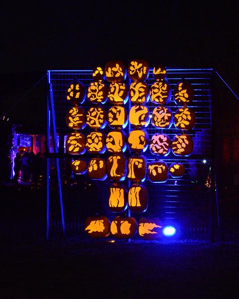 Irvine Pumpkin Glow Halloween 2014
