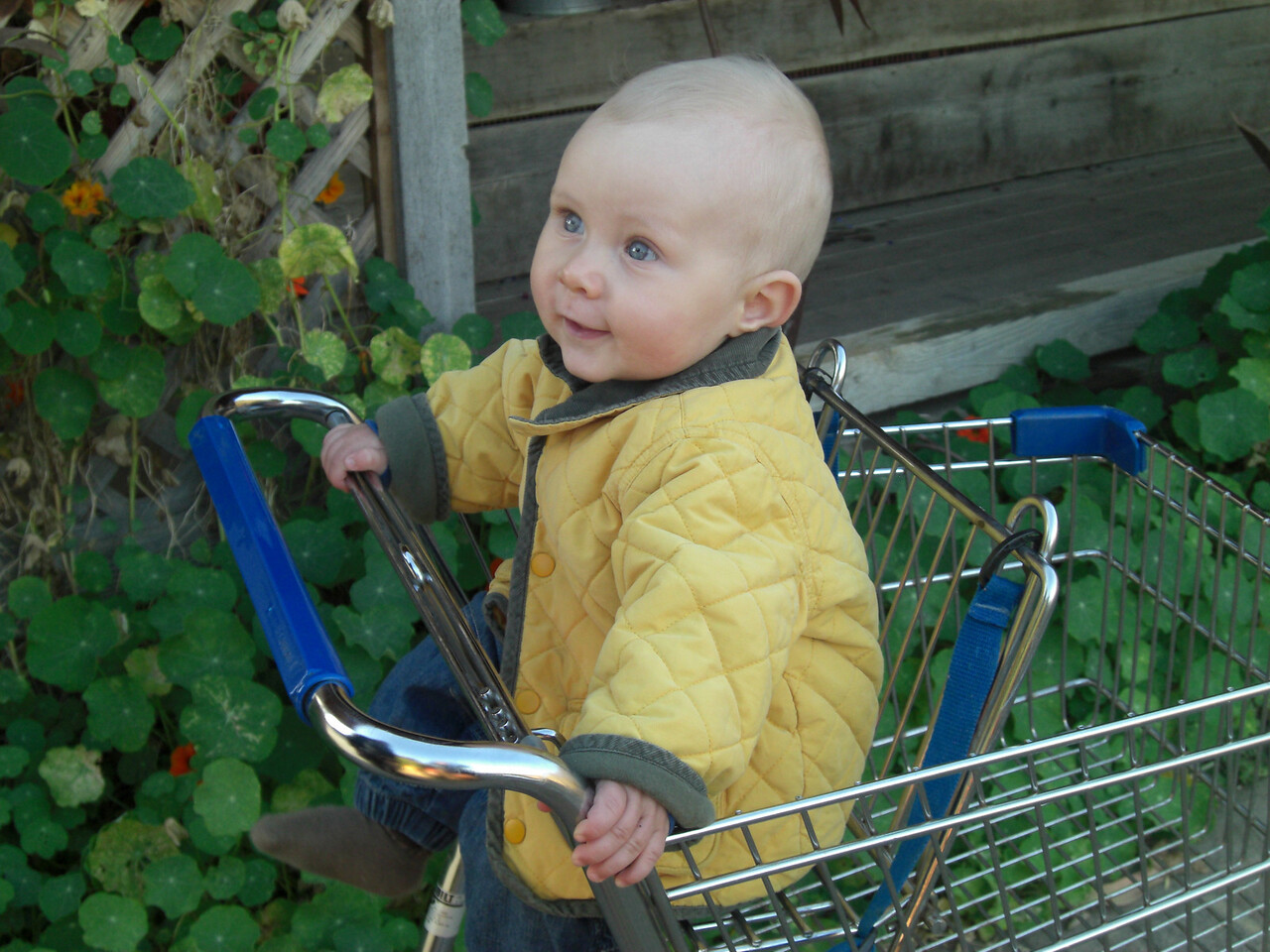 My first cart ride with Oma - that's who I am staring at
