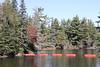 South east end of Tea Lake