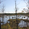 MacGregor Point Provincial Park: Tower Trail<br /> 26 September 2015