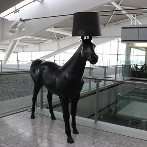 Horse with a lampshade outside the South Terraces Lounge