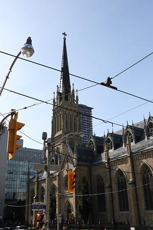 Toronto Sightseeing Bus Tour 12 September 2019