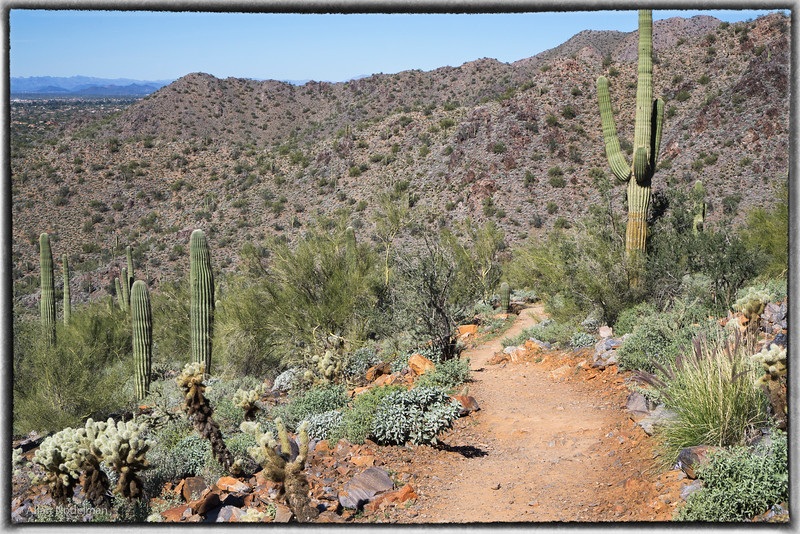 Gateway Trail February 14, 2015