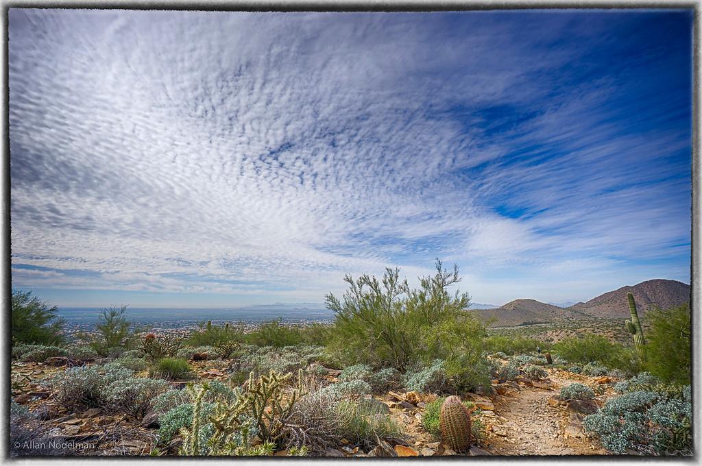 Sunrise Trail, McDowell Preserve Scottsdale (February 19, 2015)