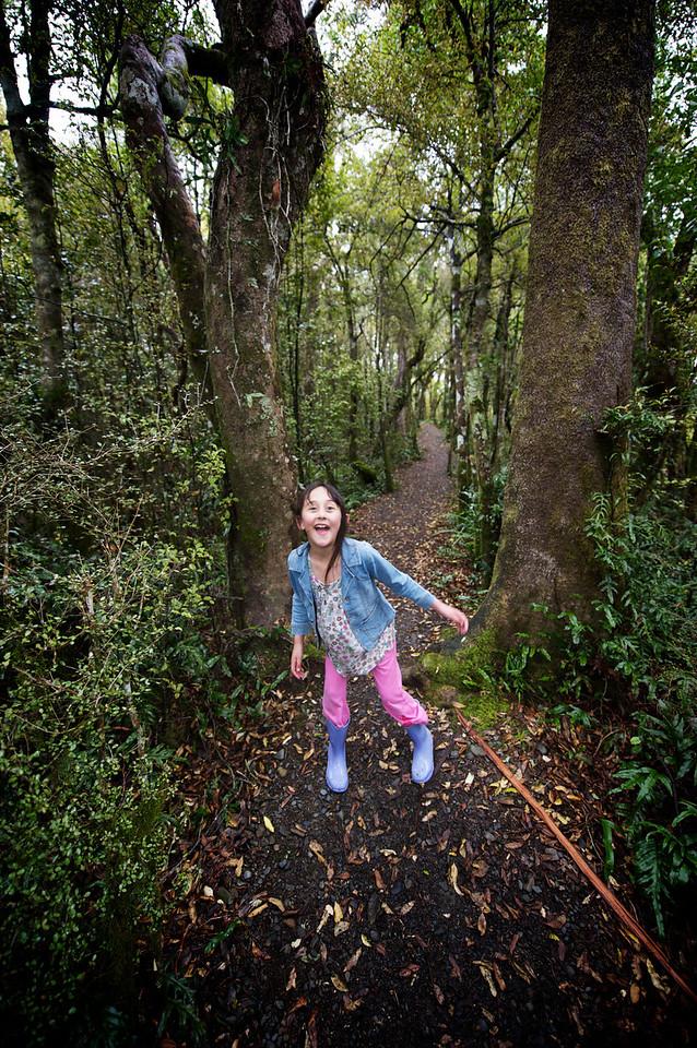 PeelForest_2011-10-14_14-21-56__DSC3015_©RichardLaing(2011)