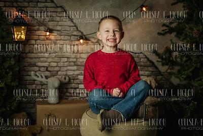 Peerce-Christmas Mini