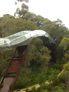 20060426_2074 The Tree Walkway in the Botanical Gardens, Perth. The Botanical Gardens are contained within the King's Parkway. The Botanical Gardens itself is quite large, and a conducted 'tram' (more like an open-air bus) tour is available.