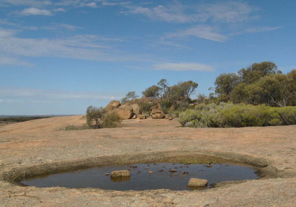 20060421_1824