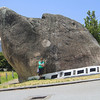 Dog Rock Albany