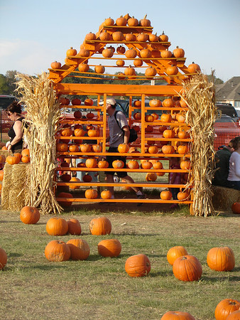 Pumpkin Patch - 2006