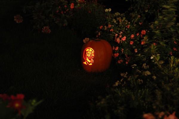 Pumpkins2005