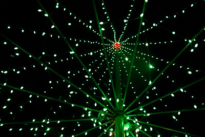 20131224-PuuOChristmasTree-Color-8895