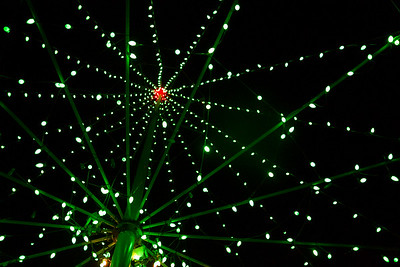 20131224-PuuOChristmasTree-Color-8894