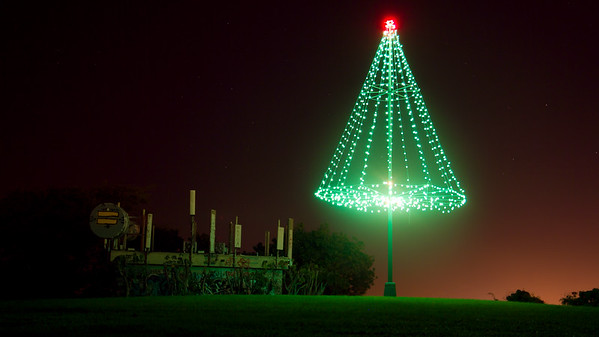 20131224-PuuOChristmasTree-Color-8891