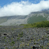 One of the lava flows from the last few years. <br /> These things flow fast and flow hot!
