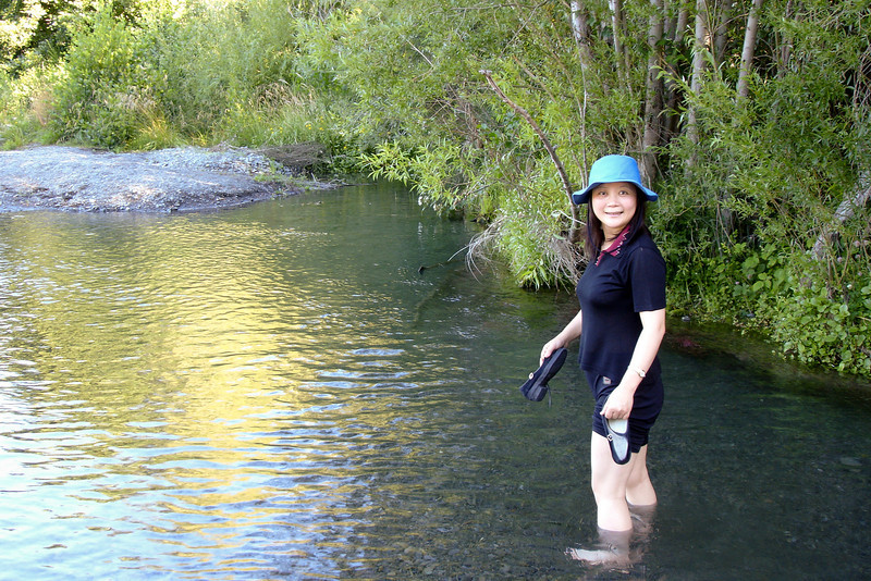It was really hot, and the chance to walk through a stream was wonderful!  This is just outside Hanmer Springs.