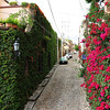 171 San Miguel de Allende