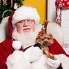 Santa_HGS_06