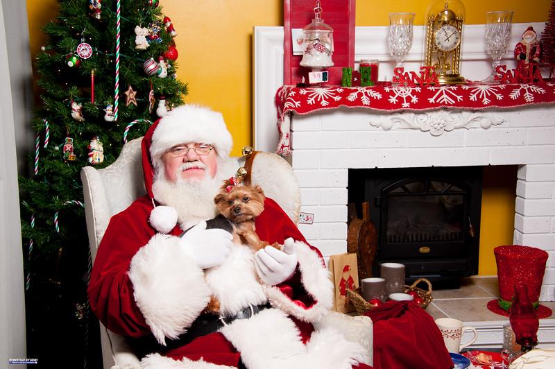Santa_HGS_05