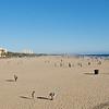 Santa Monica beach scape.