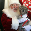 Last visit of Santa Claus to the Lowell Doctors Park building at 75 Arcand Drive, which will demolished to make room for an expanded Lowell High School. Santa poses with Cody, a two-year-old Shihtzu/Maltese mix who belongs to Jessica Lopes of Lowell. (SUN/Julia Malakie)