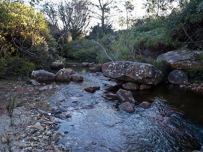 Abundant fresh flowing water at Styles Creek.