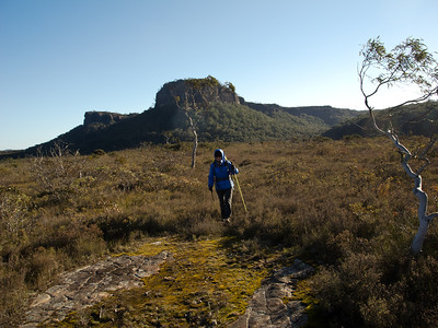 Heading across the Styles swamp towards Mt Haughton, with the magnificent Quilty's Mtn in the background.