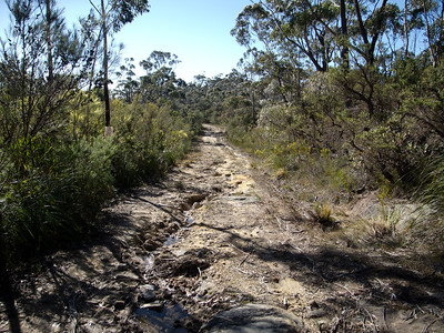 Part of the track passing through the Strang Gully area, past Newhaven Gap.