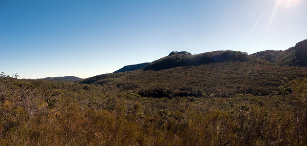 Looking back towards Mt Tarn and the ridge we had to climb when we took the wrong route off Mt Tarn. We camped at the creek in this valley after a lot of bush bashing. Some more bush bashing the next morning and we stumbled across the track coming from Wog Wog near Bibbenluke Mtn.