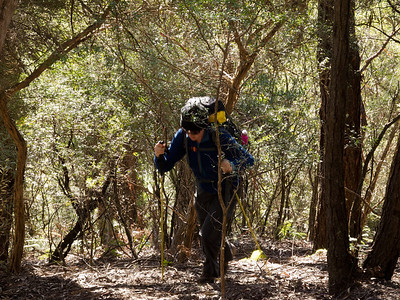 Climbing the ridge leading up to the base of Mt Haughton.