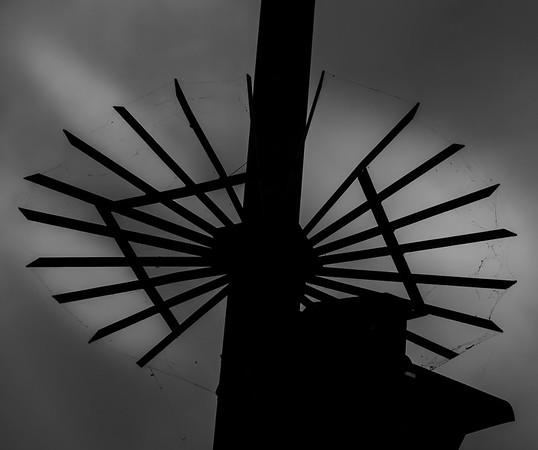 Moddy spiderweb in black and white