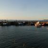 Carradale Harbour.