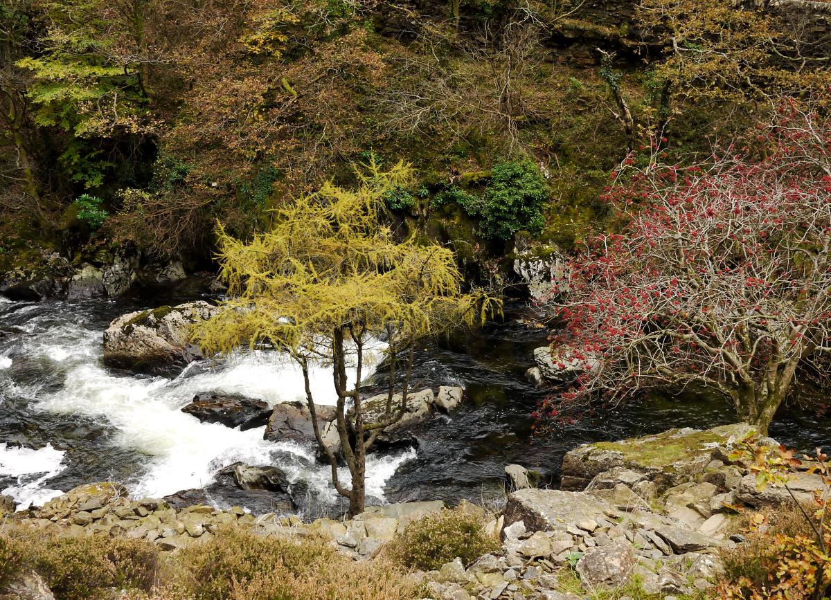 Afon Glaslyn, Pass of Aberglaslyn
