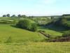 Countryside near Exford