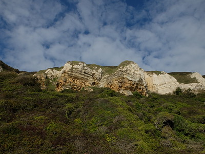 Cliffs between Beer and Branscombe