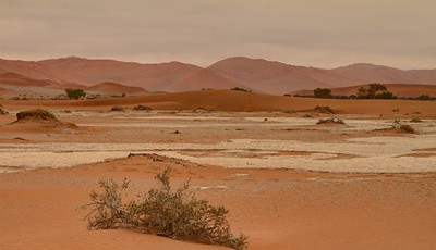 Walking in Sossusvlei towards Deadvlei