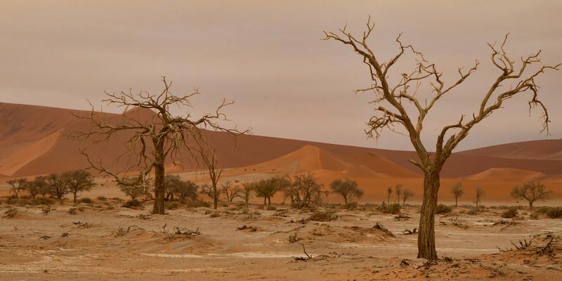 Sossusvlei Dunes area