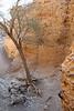 Sesriem Canyon Walk - Path Down to Canyon Bottom