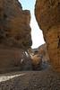 Sesriem Canyon Walk - Sunlight Entering Canyon
