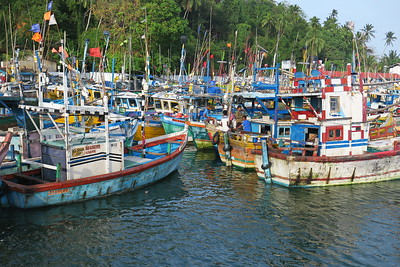 Sri Lanka - Mirissa - Whale Watching - Fishing Boats in the Harbour2