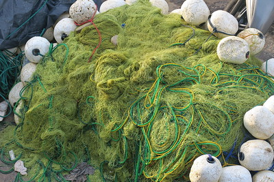 Sri Lanka - Mirissa - Whale Watching - Fishing Net