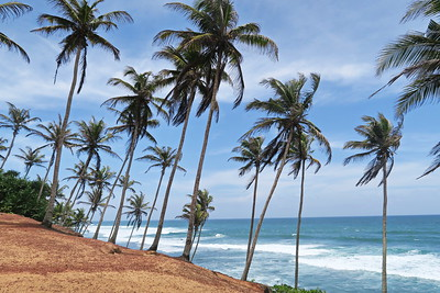 Sri Lanka - Mirissa - Coconut Hill 016
