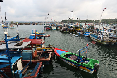 Sri Lanka - Mirissa - Whale Watching - Fishing Boats in the Harbour1