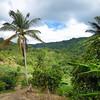 026 St  Lucia Mar 07