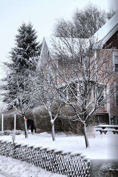 snow_2905