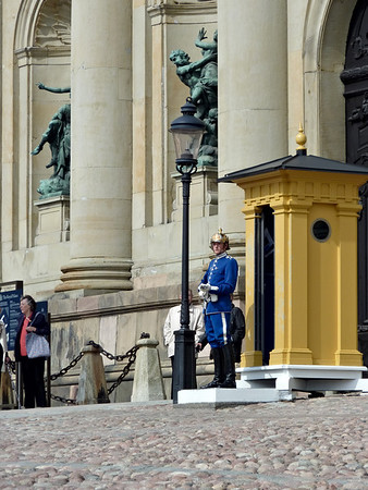 Guard at the Kungliga Slottet (Royal Palace)