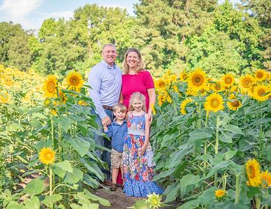 Sunflower Mini Sessions 2018