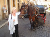HORSE & CARRIAGE AT THE TREVI FOUNTAIN