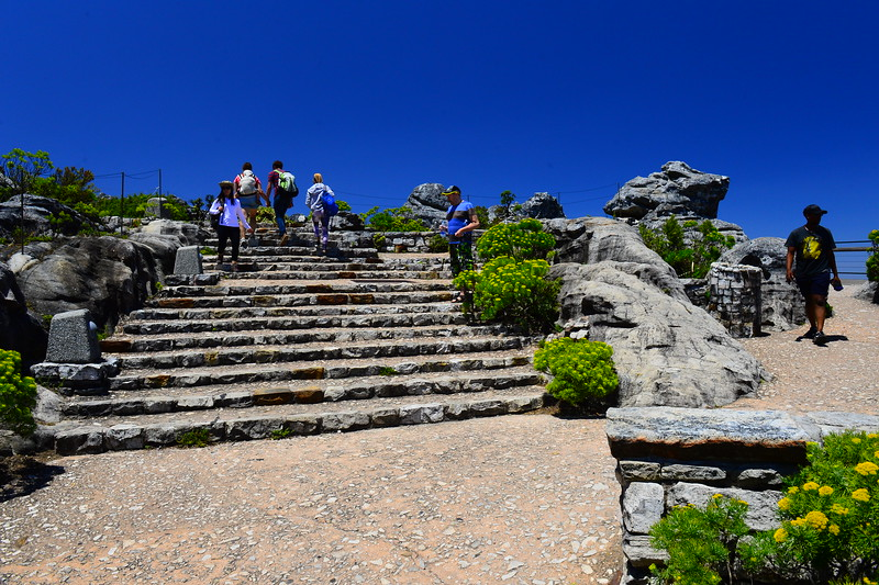 Table mountain topp