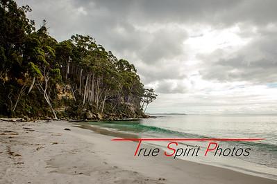 Tasmania_Holiday_December2018_to_January2019 -9